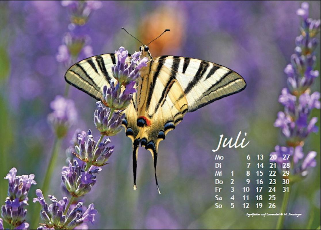 sinzinger-martin-kalender-2020-juli
