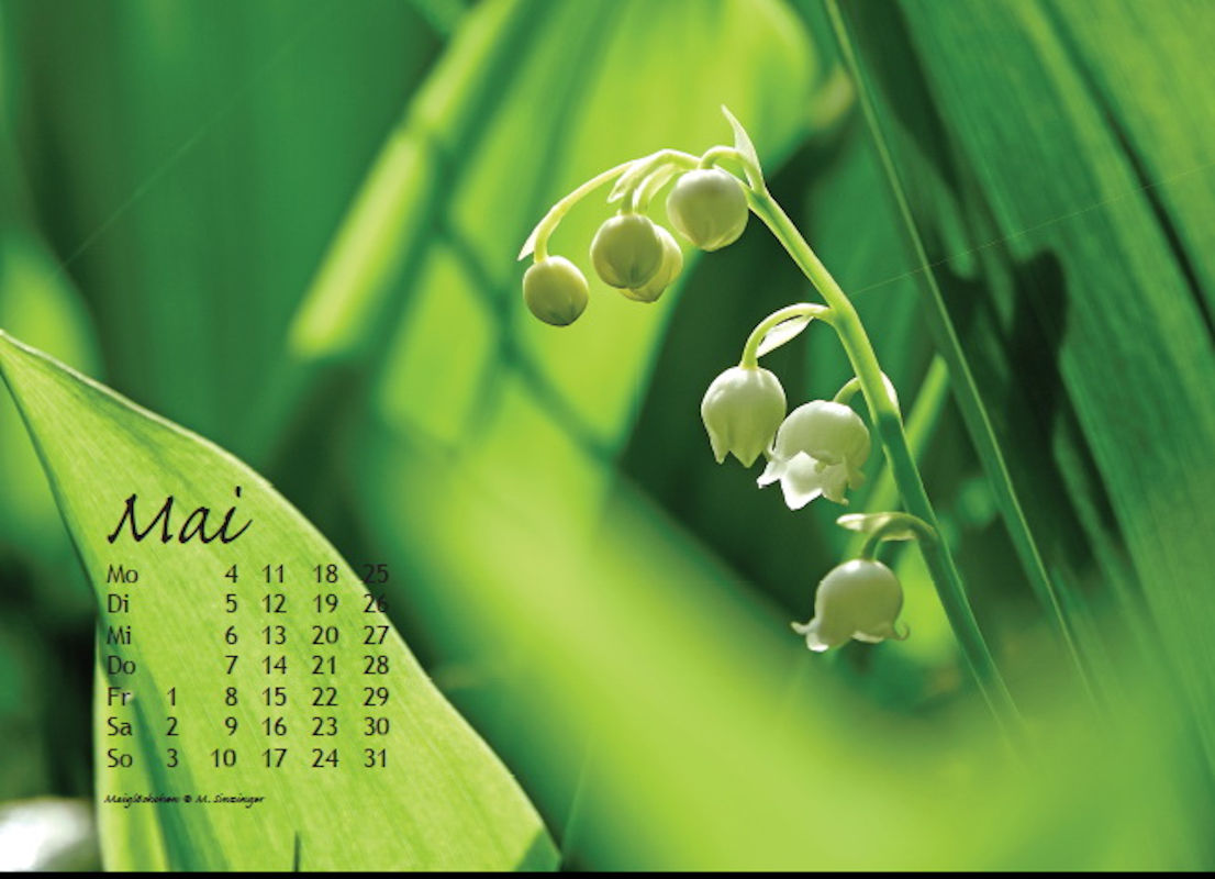 sinzinger-martin-kalender-2020-mai
